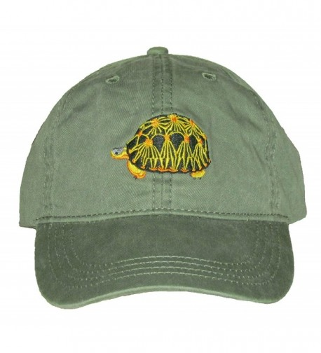 Radiated Tortoise Embroidered Cotton Cap - C7128PK1I7R