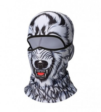 Balaclava Windproof Snowboarding Motorcycling Protection