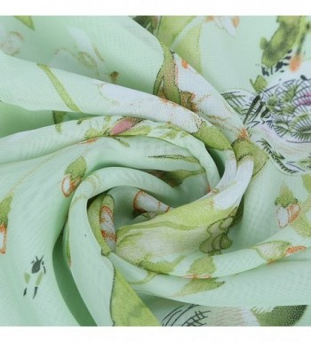 Womens Floral Chiffon Decorative Scarves in Fashion Scarves